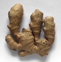 ginger-74265_640