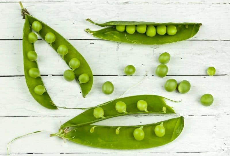 Vše, co byste měli vědět o vegetariánství
