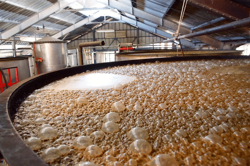 Co je fermentace